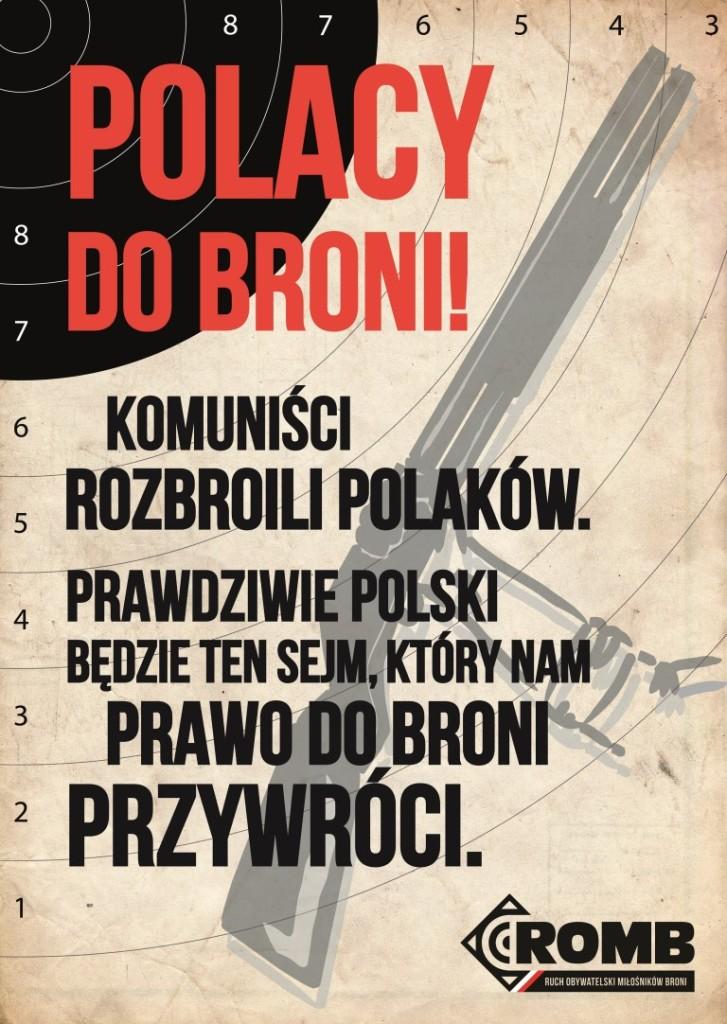Polacy do broni